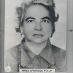 253-MARIA APARECIDA POLLO